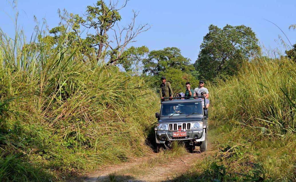 Nosorožci v Národnom parku Chitwan