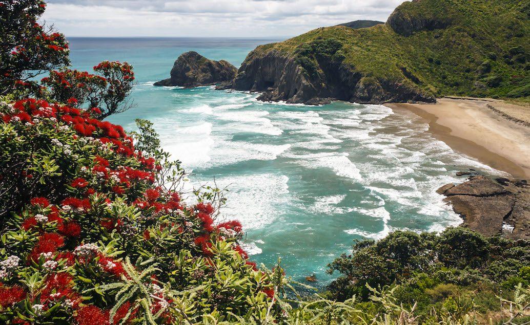 Nový Zéland mini INDIVIDUÁLNĚ