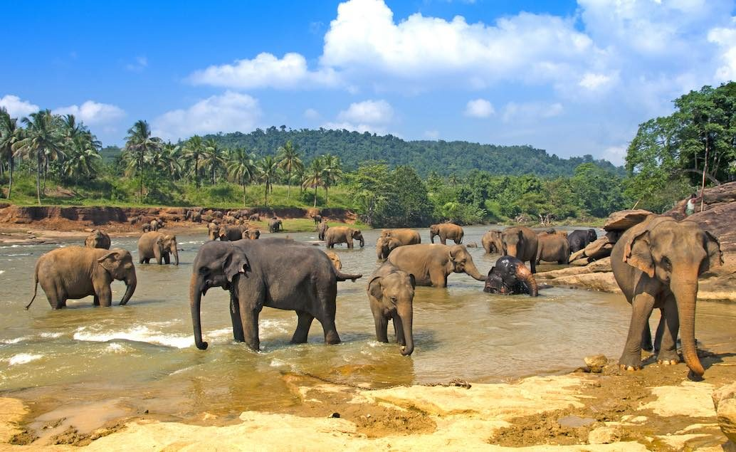 Magická India a Srí Lanka