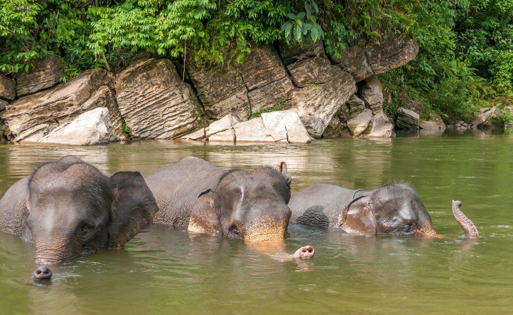 Zájazd Bali, sopky Jávy a orangutany na Sumatre