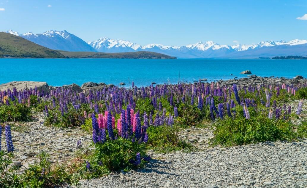 Nový Zéland aktívne pre mladých