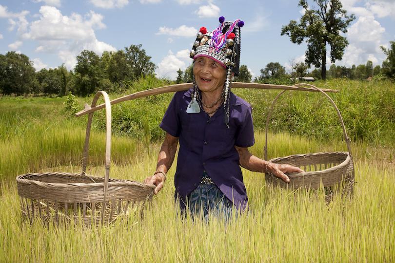 Hory a domorodé kmene v Sapa