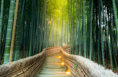 Príroda Japonska