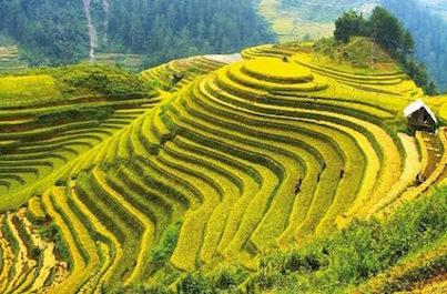 Zájazd veľká cesta Vietnam